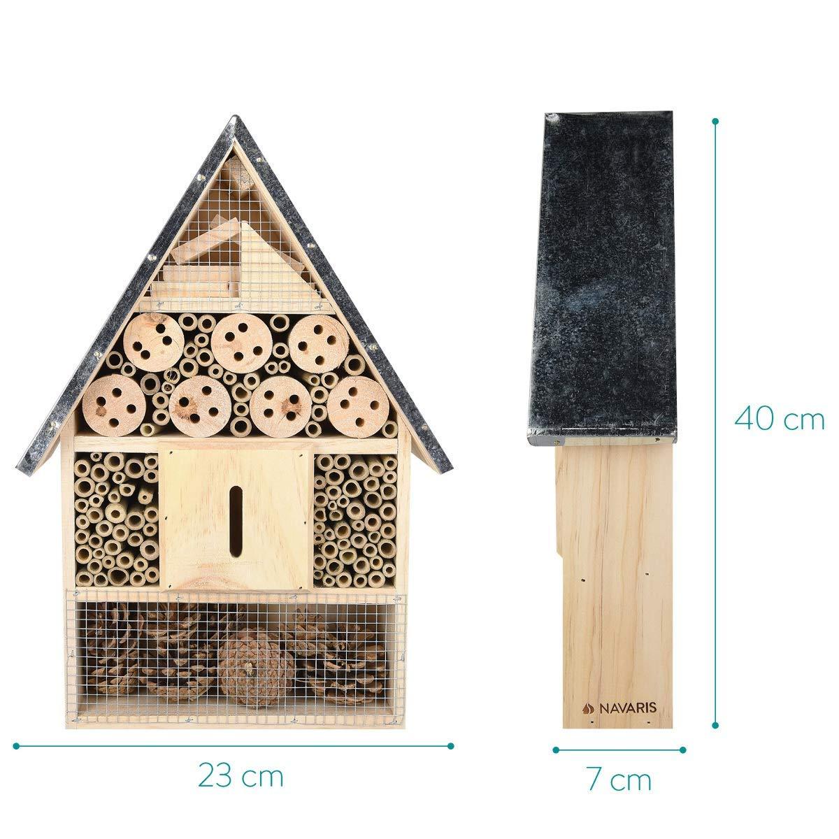 Dimensiones hotel de Insectos