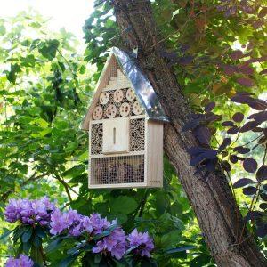 Hotel de Insectos en arbol